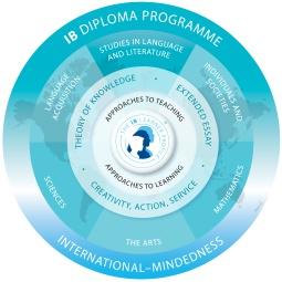 Международный бакалавриат